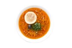 Solyanka soup Royalty Free Stock Photos