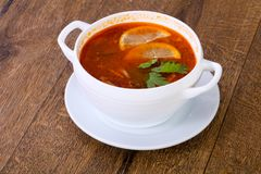 Solyanka soup with lemon. Serbed parsley stock image