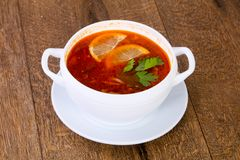 Solyanka soup with lemon. Serbed parsley royalty free stock images