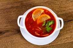 Solyanka soup with lemon. Serbed parsley Stock Images