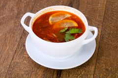 Solyanka soup with lemon. Serbed parsley Royalty Free Stock Photography