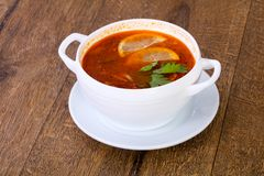 Solyanka soup with lemon. Serbed parsley stock photography