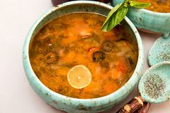 Solyanka soup with meat, smoked meat, sausages, pickled cucumber Royalty Free Stock Photos