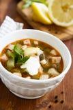 Solyanka soup Stock Image