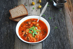 Solyanka: traditional russian soup Stock Images