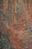 som bakgrund är kan den konkret textur använda väggen Royaltyfria Foton