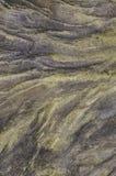 som bakgrund är kan den konkret textur använda väggen Royaltyfria Bilder
