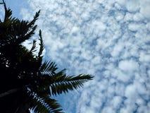 som bakgrund är kan föreställa använd skytextur Royaltyfri Foto