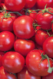 som bakgrund är kan tomaten använda wallpaperen Arkivbilder