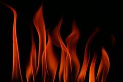 som bakgrund flamm den underbara väggen Arkivbild