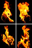 som bakgrund flamm den underbara väggen Fotografering för Bildbyråer