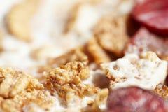 som bantar ny fruktmysli för mat royaltyfri foto