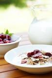 som bantar ny fruktmysli för mat fotografering för bildbyråer