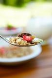 som bantar ny fruktmysli för mat Arkivbilder