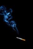som blekna skadligt resultat för hälsoleaflotusblomma som något röker till ditt Arkivbilder