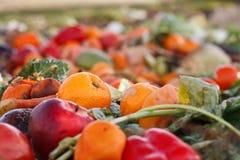 som compostgrönsaker Arkivbild