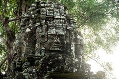 Som de Ta Árvores com raizes nas paredes angkor cambodia Fotos de Stock Royalty Free