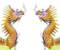 som den guld- kinesiska draken för bakgrund kopplar samman bruk Royaltyfri Bild