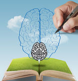 som hjärnbegrepp tecknat handPIXEL Royaltyfri Bild