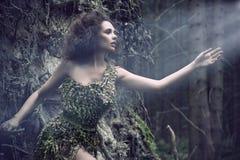 som kvinna för skönhetdeltree Royaltyfria Bilder