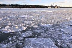 Is som svävar på floden Royaltyfria Bilder