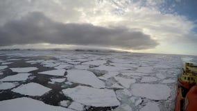 Is som svävar på reflekterande oklarheter Antarktis för vatten stock video