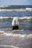 Is som täcker stenen som sticker fram från Östersjön Royaltyfria Bilder