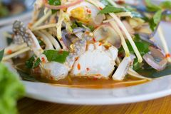 SOM-TAM, insalata cruda deliziosa tailandese della papaia fotografie stock
