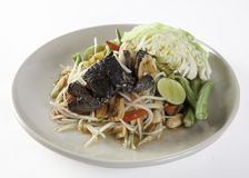 PAPAya Salad  Thai food. SOM TAM MALAKOR PAPAya Salad Stock Photography