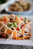 SOM-TAM Thai delicious raw papaya salad. Taste hot and spicy this dish with crab. Papaya salad with red chili stock image