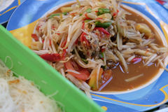 Som Tum with pickled fish and shrimp. Thai papaya salad, Som Tum with pickled fish and shrimp Stock Images