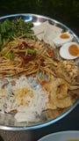 Som-tum tray. Popular Thai Papaya spicy salad mix in one tray Stock Image