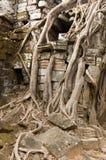 Som van Ta het detail van de Tempel Royalty-vrije Stock Foto