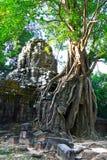 Som van Ta Tempel, Angkor Stock Afbeelding