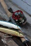 som vishet för utrustningfiskefolk Royaltyfri Fotografi
