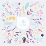 som wish för blom- scroll för färgdesignelement vectorized dig design tecknad elementhand Samling av sprin Royaltyfri Fotografi