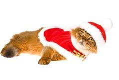 Somalí lindo con el casquillo del sombrero de Santa y la chaqueta roja Foto de archivo