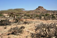 Somali ladscape. The landscape in the area of Las Geel Royalty Free Stock Photos