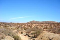 Somali ladscape Stock Image