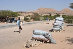 Somali landscape Royalty Free Stock Photo