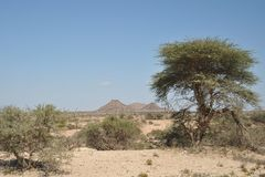 Somali landscape Royalty Free Stock Photography