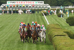 Somali Lemonade Wins The Diana Stakes. SARATOGA SPRINGS, NY - JUL 19: The field for the Grade I TVG Diana Stakes heads down the stretch at Saratoga Race Course royalty free stock photography