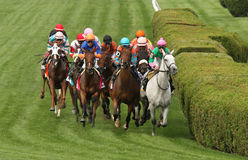 Somali Lemonade Wins The Diana Stakes. SARATOGA SPRINGS, NY - JUL 19: The field for the Grade I TVG Diana Stakes heads down the stretch at Saratoga Race Course stock image