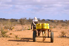 African male with horse-drawn carriage carrying water to the pri Stock Photography