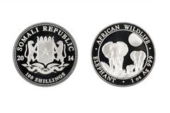 Somali republic silver coin 1oz 2014 African wildlife elephant. Somali republic silver coin 1oz 2014 African wildlife isolated white background Stock Photo