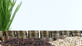 Somalia flag waving with stack of money coins and piles of wheat. And rice seeds stock footage