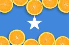 Somalia flagga i citrusfruktskivahorisontalram royaltyfria bilder