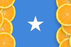 Somalia flagga i vertikal ram för citrusfruktskivor royaltyfria bilder