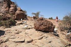 Somalia, Las Geel Royalty Free Stock Photo