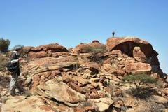 Somalia. Somali landscape in the area of Las Gil Royalty Free Stock Photo